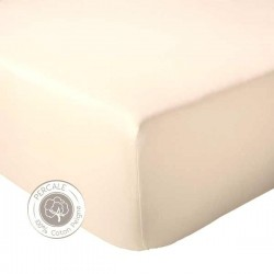 Drap housse Percale Tradilinge Coquille